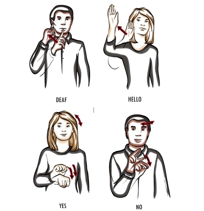 Deaf illuststrations-411913-edited.jpg