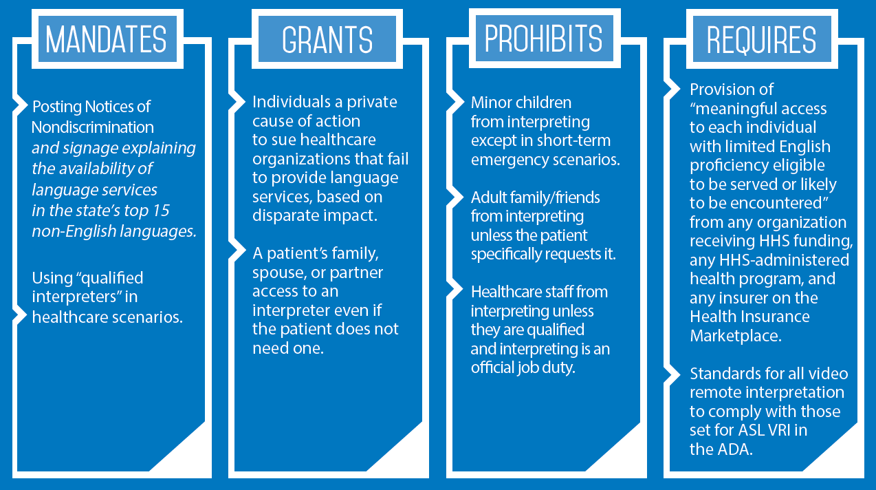 Section-1557-Infographic-1.png